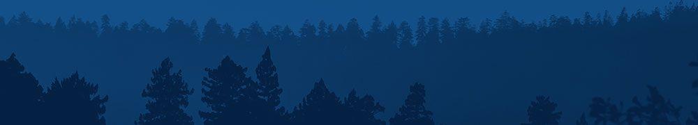 forest_btn_bg.jpg